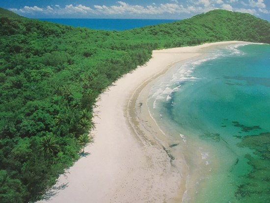 cape tribulation australie