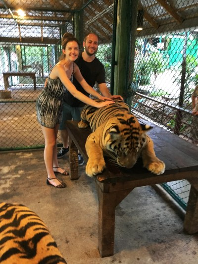 In the cage with tigers | Tiger Kingdom | Phuket | Thailand