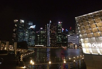 View of downtown Singapore | Travel guide for a Trip to Singapore