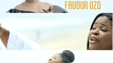 Photo of [Audio+Video] The King By Favour Uzo