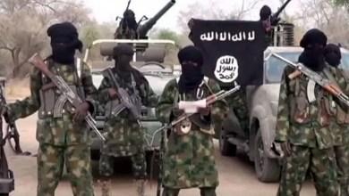 Photo of Boko Haram Kills 14 Farmers In Borno State.