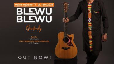 Photo of [Audio] Blewu Blewu By Morris Makafui