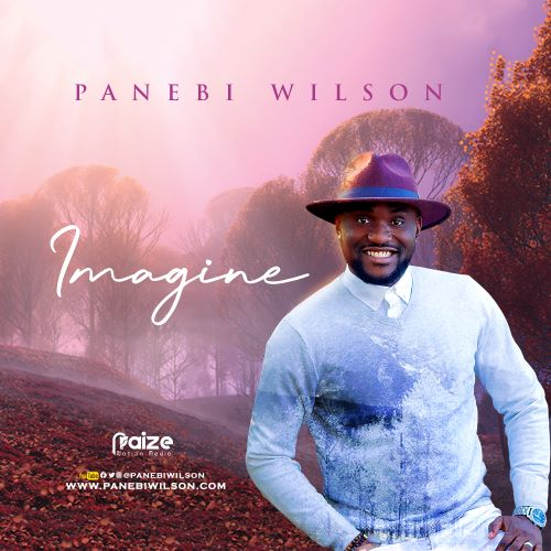 Imagine by Panebi Wilson