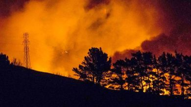 Photo of New Zealand Bushfires Raze Dozens Of Homes.