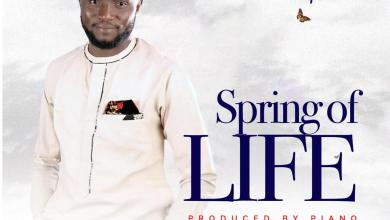 Photo of [Audio] Spring of Life By Innosaint