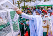 Photo of Shocking As Pigeons Released By Buhari Refuse To Fly At Armed Forces Remembrance.