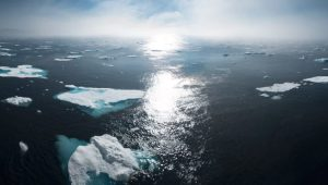 Why Is the United Nations Climate Week Important Now?