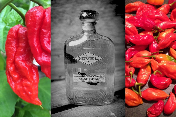 No pain no gain. Every El Nivel bottle is crafted, labeled and sealed by hand, making each a unique piece that could feel as much at home in an art gallery as your home bar. But first you have to get through a bottle of ghost pepper tequila. Ouch! Photo courtesy of El Nivel