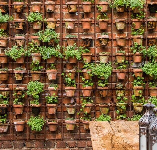 title | Garden Wall Ideas