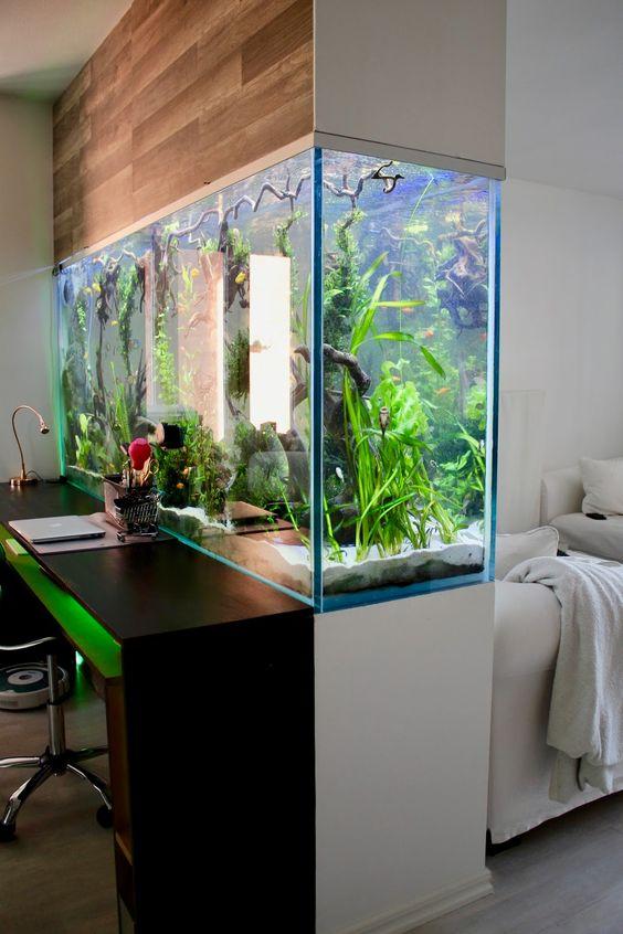 15 Amazing Ideas With Interior Aquariums Page 10 Of 15
