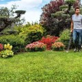 designing your landscape