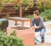 Build A Redwood Planter Box!