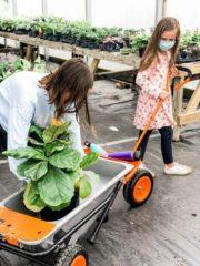 "Aerocart Named ""Best Two - Wheel Wheelbarrow"" By Better Homes & Gardens"