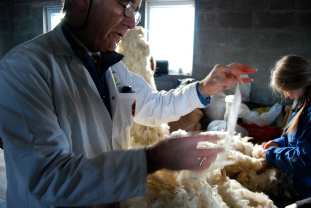Trainees take part in a wool grading workshop