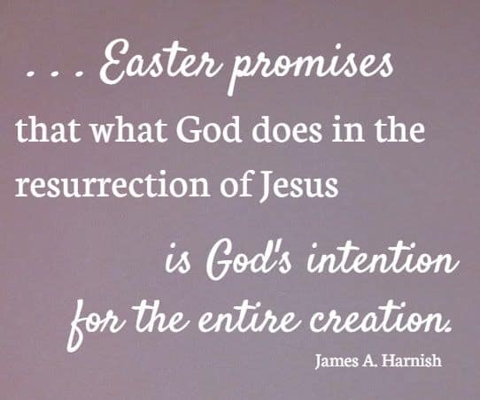 . . .  Easter promises that what God does in the resurrection of Jesus is God's intention for the entire creation. James A. Harnish