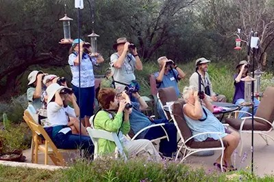 Groups welcomed to watch the birds