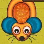 Key Rodent