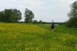 ... über Blumenwiesen ...