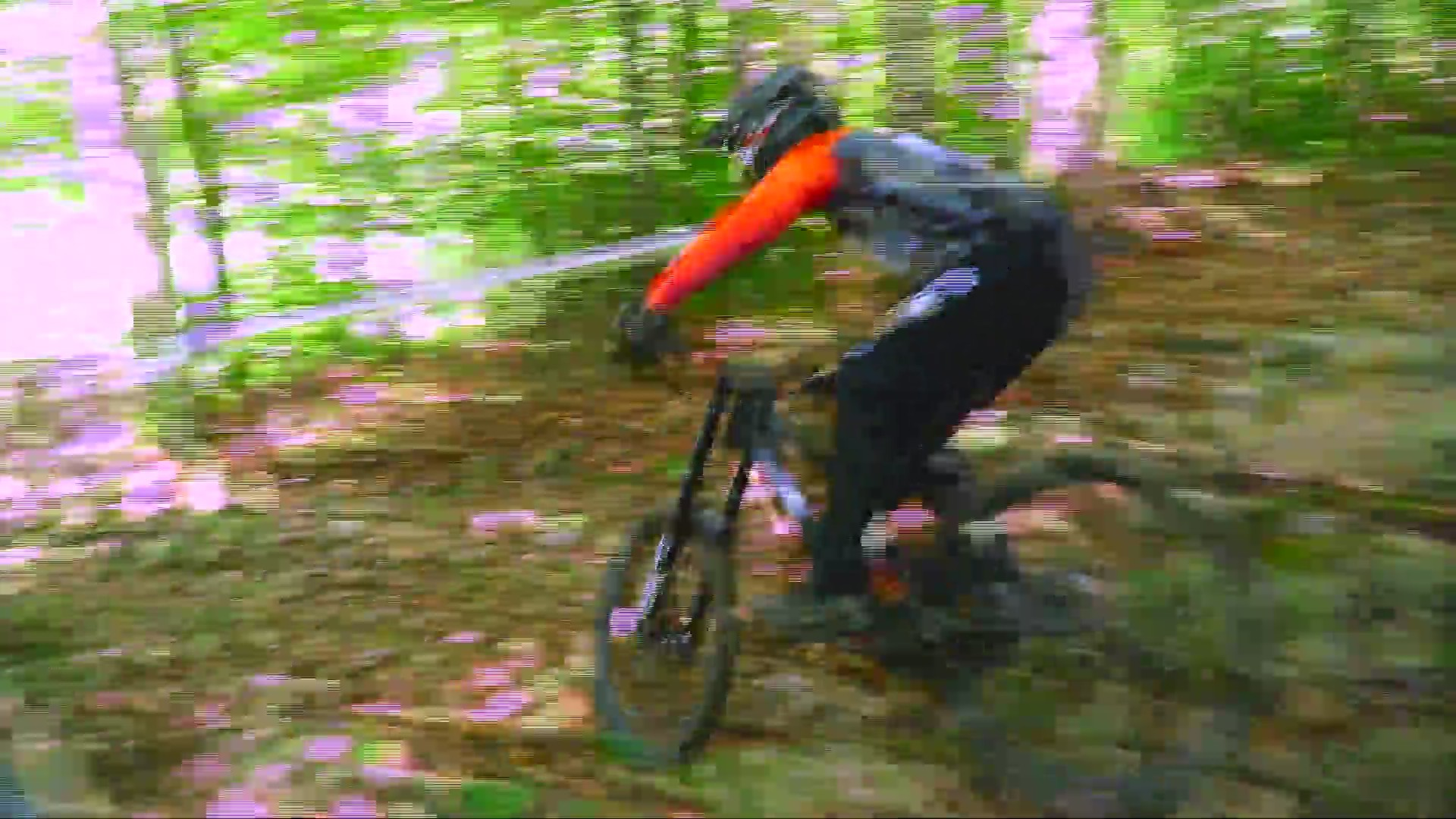 The 2019 UCI Mountain Bike World Cup is coming to Snowshoe Resort