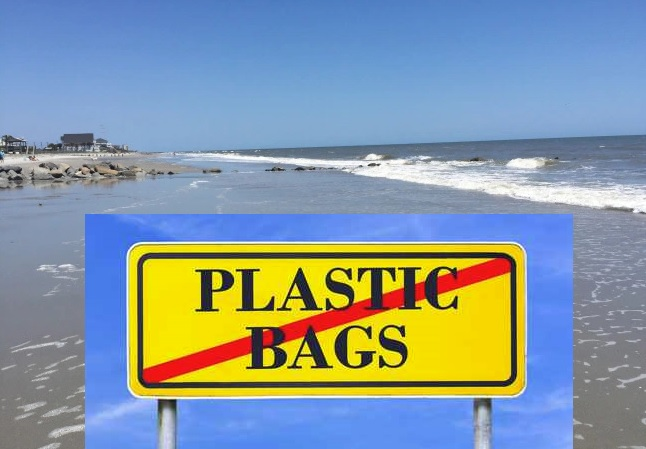 no plastic bags_258723