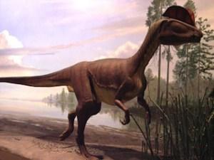 Rocky Hill Dino State Park image