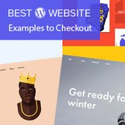 21 Excellent WordPress Website Examples That You Should Check Out in 2021