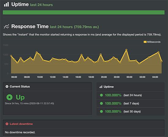 Bluehost uptime monitoring test result