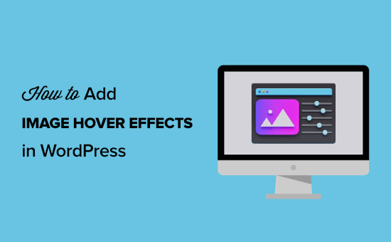 How to add image hover effects in WordPress