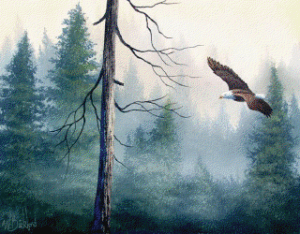 Wilson Bickford: Into the Misty Woods