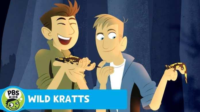 WILD KRATTS   Fire!   PBS KIDS