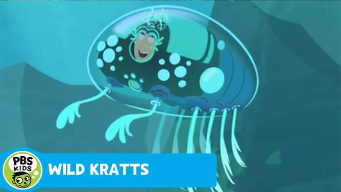 WILD KRATTS | Martin Becomes a Barnacle | PBS KIDS