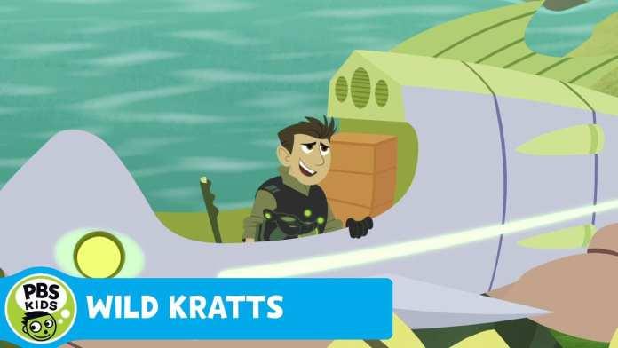 WILD KRATTS | Spirit Bear vs. Black Bear | PBS KIDS