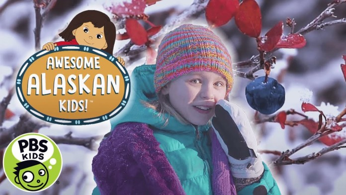Molly of Denali | Awesome Alaskan Kids: Blueberries | PBS KIDS