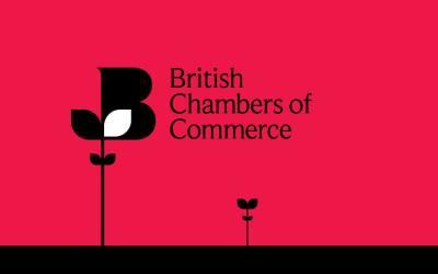 BCC Quarterly Economic Survey Q1 2019: Business hits the brakes
