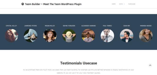 Team Builder - Rencontrez le plugin WordPress Team Premium