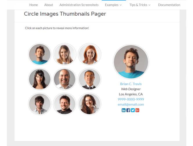 Plugin WordPress Premium Team Showcase