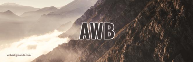Plugin d'arrière-plans WordPress avancé