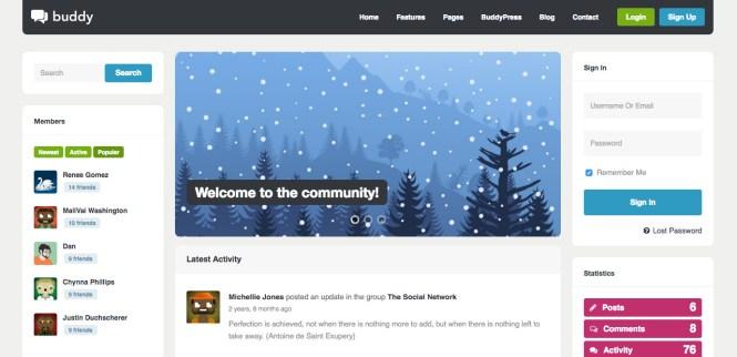 Buddy Multi-Purpose WordPress / BuddyPress Theme