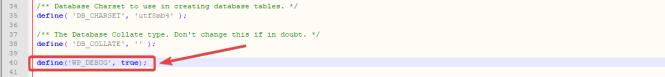 Activer WP Debug