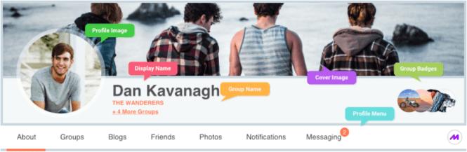profilegrid profils utilisateur plugin wordpress