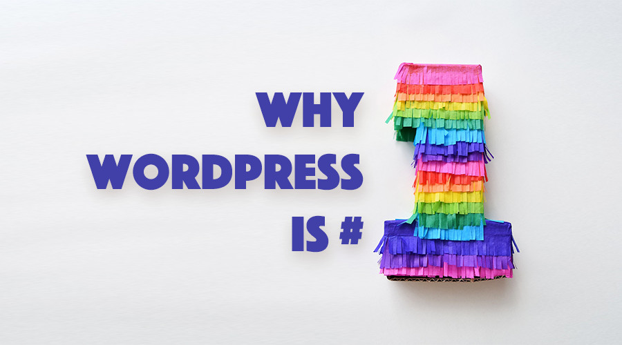 Reason Why WordPress Is the Best Platform for Your Website