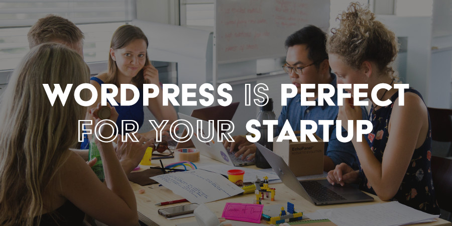 Why WordPress Is Ideal for Startups & Entrepreneurs