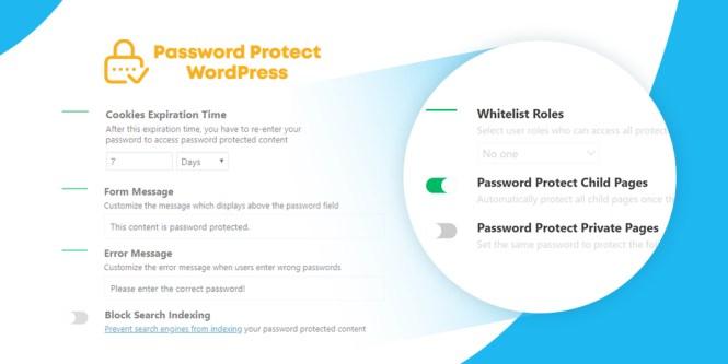 Mot de passe protéger WordPress Pro
