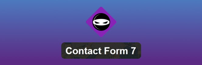 Extension du formulaire de contact WPBruiser 7