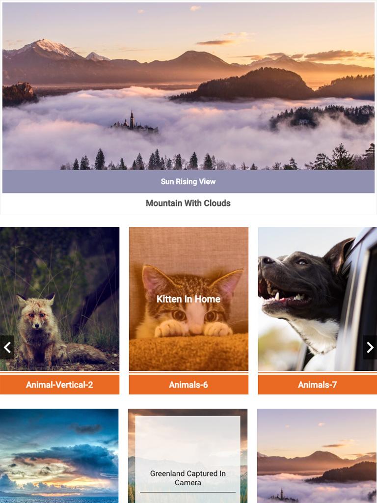 Album and Image Gallery Plus Lightbox 4