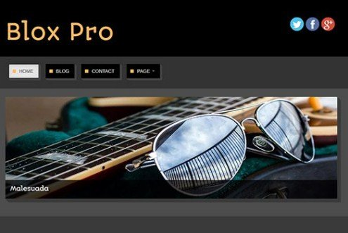 CyberChimps Blox Pro WordPress Theme