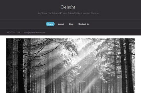 CyberChimps Delight WordPress Theme