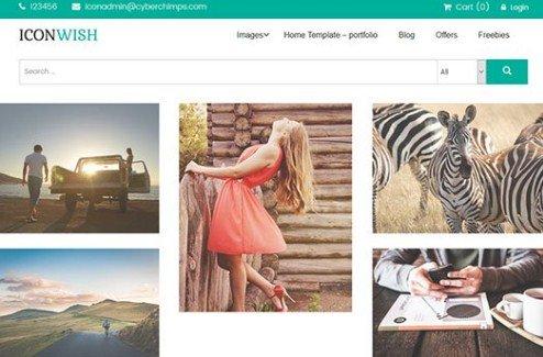 CyberChimps Iconwish WordPress Theme
