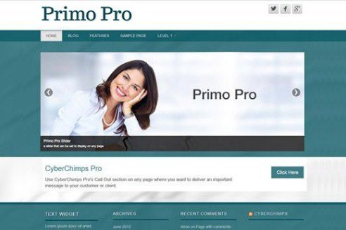 CyberChimps Primo Pro WordPress Theme