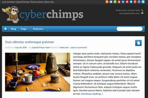 CyberChimps iFeature Pro 5 WordPress Theme